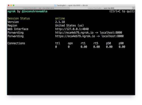 screenshot of Terminal with ngrok running